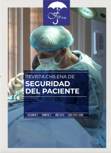 REVISTA CHILENA DE SEGURIDAD DEL PACIENTE VOL 2 AÑO 2019