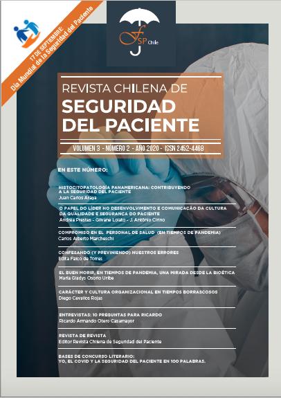 Revista Chilena Seguridad del Paciente